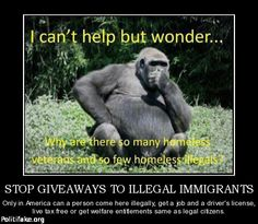 Illegal immigration: your opinion?