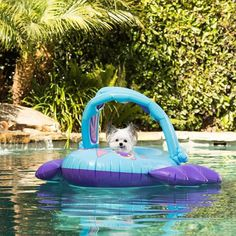 """""""I love being in the pool with my float!"""""""