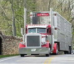 18 Wheeler Cattle Hauler