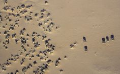 Great aerial shot of #Elephants lumbering along #DoroNawas in Damaraland   Explore Namibia today: stories.namibiatourism.com.na