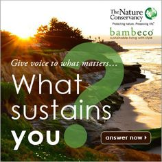 Give voice to what matters, What sustains you? #whatsustainsyou