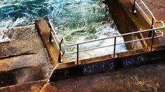 ONE WORLD  #bondibeach #beachlife #bondi #beautiful #sydney #australia #oneworld #graffiti #pool #surf #morning #travel #easternsuburbs #waves #speedo #sand #aussie #bikini #bondiicebergs #budgysmuggler #straya #swim #surfing #tourismaustralia #seeaustralia #coast #bonditobronte #sydneybeaches #fitness #fit by afimmano http://ift.tt/1KBxVYg
