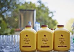 Forever Living is the world's largest grower, manufacturer and distributor of Aloe Vera. Discover Forever Living Products and learn more about becoming a forever business owner here. Forever Living Aloe Vera, Forever Aloe, Gel Aloe, Aloe Vera Gel, Aloe Vera Supplement, Aloe Vera Juice Drink, Forever Business, Beverages, Drinks