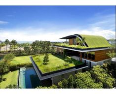 Hilly Rooftop Home and Garden Sanctuary