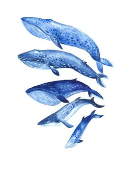 Whales - Print from Original Watercolor Illustration,  Nautical Ocean