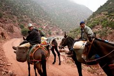 Today, sixty percent of the Moroccans people are Berber. Scattered almost everywhere in the country, a big part still live in the mountains of the Moroccan High Atlas. A very rough life for these isolated villagers particularly during the winter periods.     Courtesy: Jonathan Fontaine.