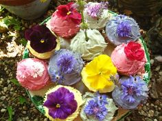 Cupcakes and edible flowers
