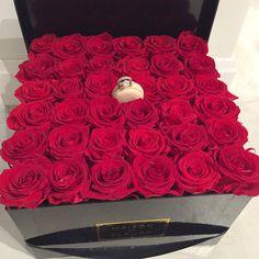 Classy and Fabulous: Maison Des Fleurs Flower Boxes, My Flower, Beautiful Roses, Beautiful Flowers, Romantic Roses, Spoiled Girlfriend, Girlfriend Proposal, Shop Engagement Rings, Arte Floral