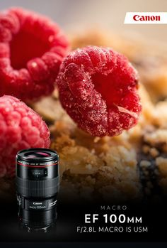Unleash the power of macro with the Canon EF 100mm f/2.8L Macro IS USM lens.