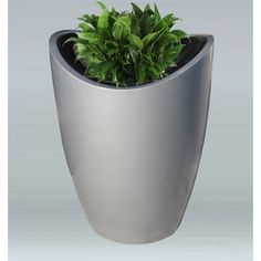 Allied Molded Products Novelty Pot Planter Color: Pure White