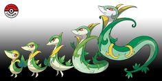 In-Progress Pokemon Evolutions | #495.5 - Snivy seek out sunlight, where they... Pokemon Fake, First Pokemon, Black Pokemon, Type Pokemon, Pokemon Fan Art, Cool Pokemon, Digimon, Papercraft Pokemon, Pokemon Eevee Evolutions