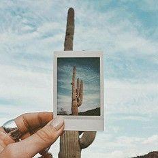 Desert vibes by Sarahloven