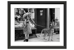Cheetah Who Shops on OneKingsLane.com