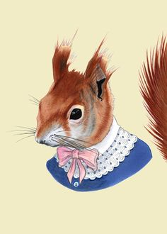 Etsy の Red Squirrel print 5x7 by berkleyillustration