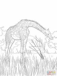 african coloring pages - Google Search