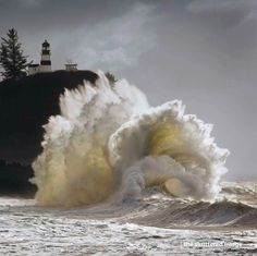 Cape Disappointment, Washington at the mouth of the Columbia River. Been there Loved that!