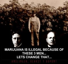 The+3+Men+That+Made+Marijuana+Illegal+For+The+Whole+World
