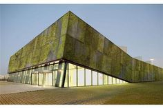 Biological concrete invented for constructing 'living' building materials with lichens, mosses | News | Archinect