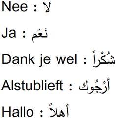 Arabisch leren? Elke cursus Arabisch is een taalcursus Arabisch