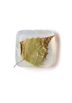 Naturalne duże kwadratowe- liść/Natural large square- leaf