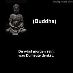 22 Besten Buddha Zitate Buddhistische Weisheiten Bilder Auf