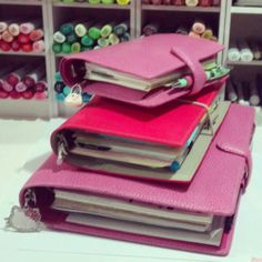 A5 Pink Finsbury Filofax Planner Organizer For Sale $300