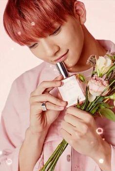 Joshua for clean perfume
