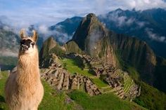 """Machu Picchu -- this was seriously the first pin when I visited the """"travel"""" section of Pinterest. Fate!"""