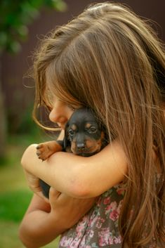 In the summer on a green grass girl with puppies dachshund #dachshund