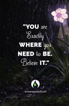 You are exactly where you need to be. Believe it. #COCOMD Inspiration www.cocomd.com