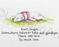 Pet Quotes Dog, Pet Loss Quotes, Animal Quotes, Pet Loss Grief, Loss Of Dog, I Love Dogs, Puppy Love, Miss My Dog, Dog Poems