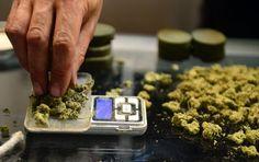 Araştırmalara göre Marijuana içmek kırılan kemiklerin iyileşmesinde faydalıymış