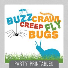 Buzz, Crawl, Creep, Fly - BUGS Party Package - INSTANT DOWNLOAD