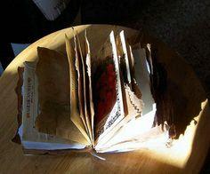 Never Enough Time: Paper Bag Garden Journal
