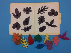 File Folder Games - tons of fun for little ones and easy to store! Quiet book page! Fall Preschool, Preschool Themes, Preschool Activities, Preschool Printables, Preschool Seasons, Quiet Time Activities, Autumn Activities, Toddler Activities, Toddler Learning