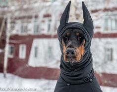 Pet Gift Dobermann Coat Pet Dog Winter jacket Fall Rainy Weather Jackets Vest Horsecloth with HAT - made to order and individually crafted