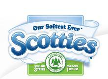 Scotties Facial Tissue