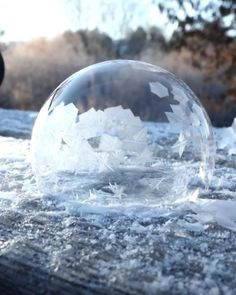 Amazing ice bubble - Discover Animal - Re-Wilding Beautiful Nature Scenes, Amazing Nature, Beautiful Places, Ice Bubble, Wow Video, Oddly Satisfying Videos, Belle Photo, Mind Blown, Illusions