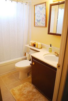 I like how the countertop extends over the back of the toilet.  Looks nice! definately need to do this in our upstairs bathroom when we redo it!