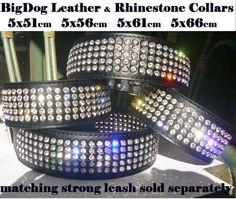 Well we can't leave out Roxy - I don't think a wedding dress and veil will suit her, yes you can buy them for dogs!!!      LEATHER DOG COLLAR BLACK RHINESTONES STAFFY PITBULL LABRADOR DOBERMAN ROTTY etc | eBay