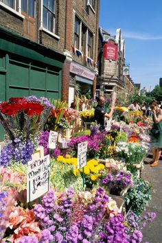 Columbia Road Flower Market, sunday mornings. So many beautiful flowers. Such a fun day on Columbia Road
