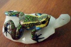 Wounaan Embera Poison Dart Frog Tagua Pendant Carving-Panama 3.97082