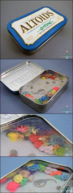 Miniature Coral Reef Tin for Sale now on eBay! http://www.ebay.com/itm/271511842314?ssPageName=STRK:MESCX:IT&_trksid=p3984.m1554.l2649