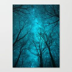 Stars Can't Shine Without Darkness (Night Trees Silhouette)<br/> Series: A Walk Through the Woods<br/> <br/> night stars, nebula sky, teal night, galaxy, teal galaxy, nebula, birds at night, tree branches, abstract tree artwork, tree tops, magical thinking, celestial scene, silhouette, trees at night, star field, shine in the darkness, stars can't shine without darkness art, twilight trees, nature's artwork, abstract tree design, ethereal trees...