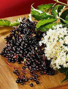 Bodzavirág Blackberry, Keto, Fruit, Food, Essen, Blackberries, Meals, Yemek, Rich Brunette