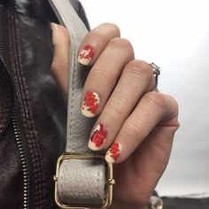Curious Beauty layered over Not Too Shabby from the Disney Collection by Jamberry #Belle #disneypricess #beautyandthebeast #nailswithkarla