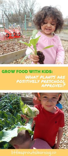 Do you want to grow food with your kids but don't know where to start? Choosing the right plants can make all the difference in your success.