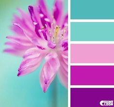(80) Входящие — Рамблер/почта Color Schemes Colour Palettes, Colour Pallette, Color Palate, Color Combos, Color Stories, Color Swatches, Color Theory, Color Inspiration, Color Patterns