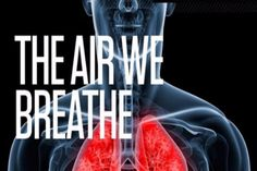 The Top 10 Principal Components of the Air We Breath  All this is in every lungful we take....  #airpollution #breathelife #breathe