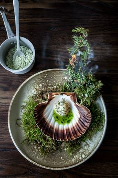 Scallops with fresh juniper berries and snow infused with pine needles | Studio, The Standard Copenhagen #plating #presentation